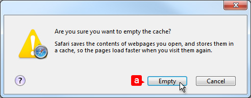 website-problem-solving-cache-safari-options-empty